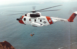 Pelican_from_coast_guard_air_statio
