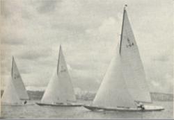 1948olympicreportpic