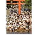 Http__mdn_mainichi_jp_photospecials_grap_44